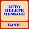 Auto Delete Message