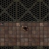 Random dungeons